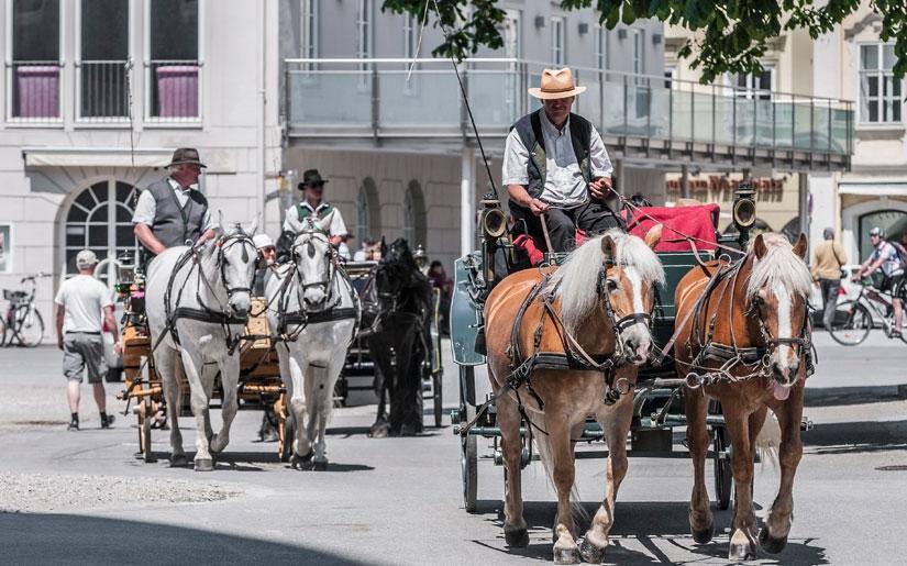סיור בכרכרה רתומה לסוסים בקלסיקה של זלצבורג