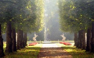 פארקים בזלצבורג